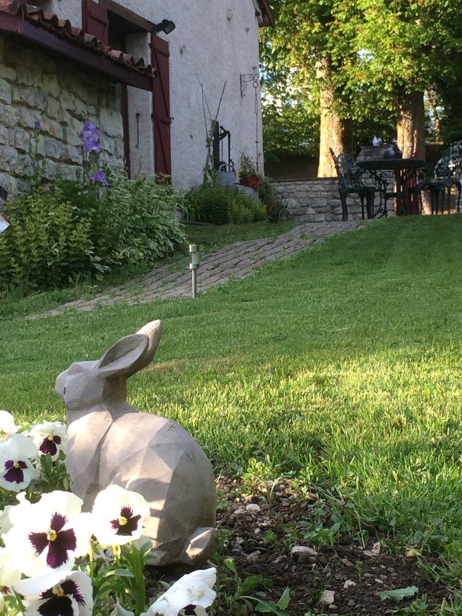 Jardin clos pour vos animaux