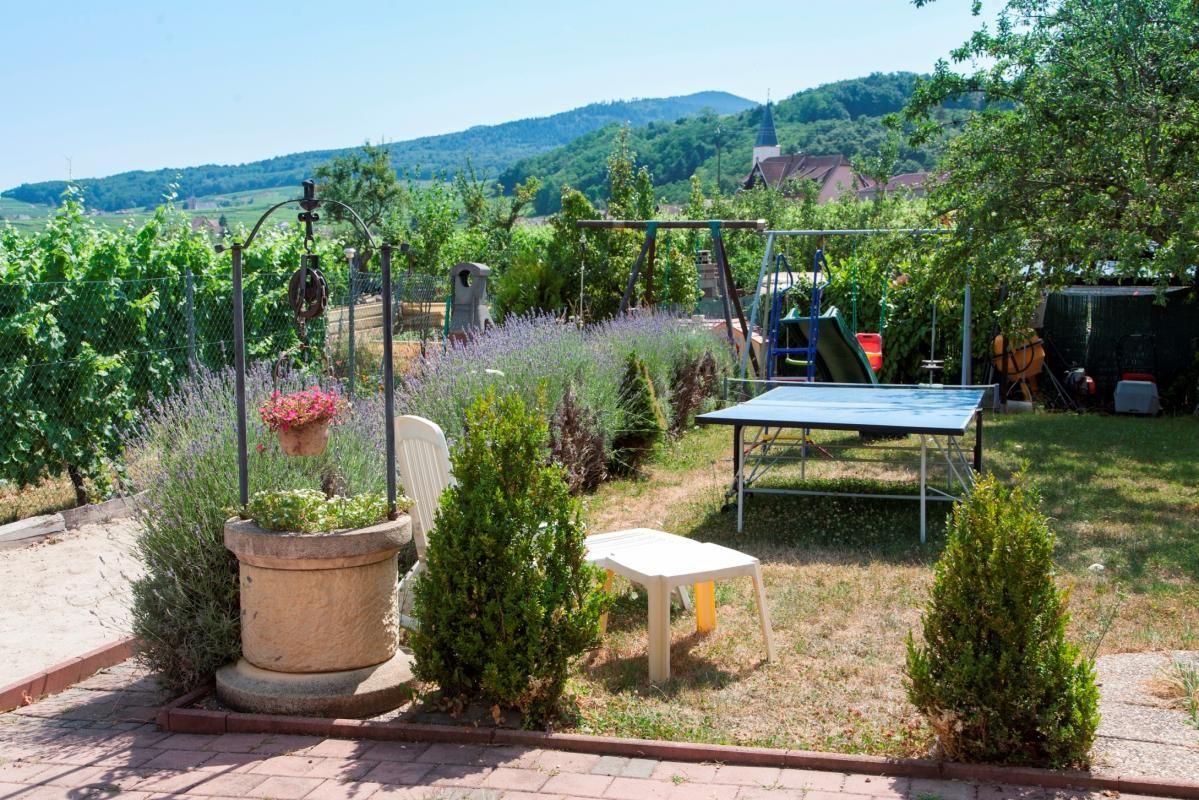 espace jardin : Table de ping-pong