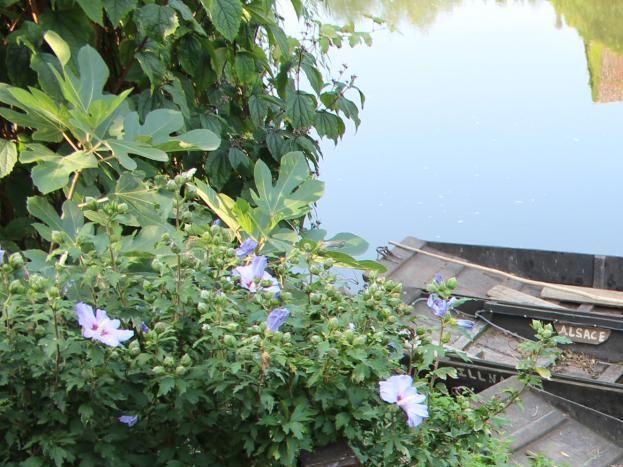 Vue sur les barques du propriétaire batelier-calfat