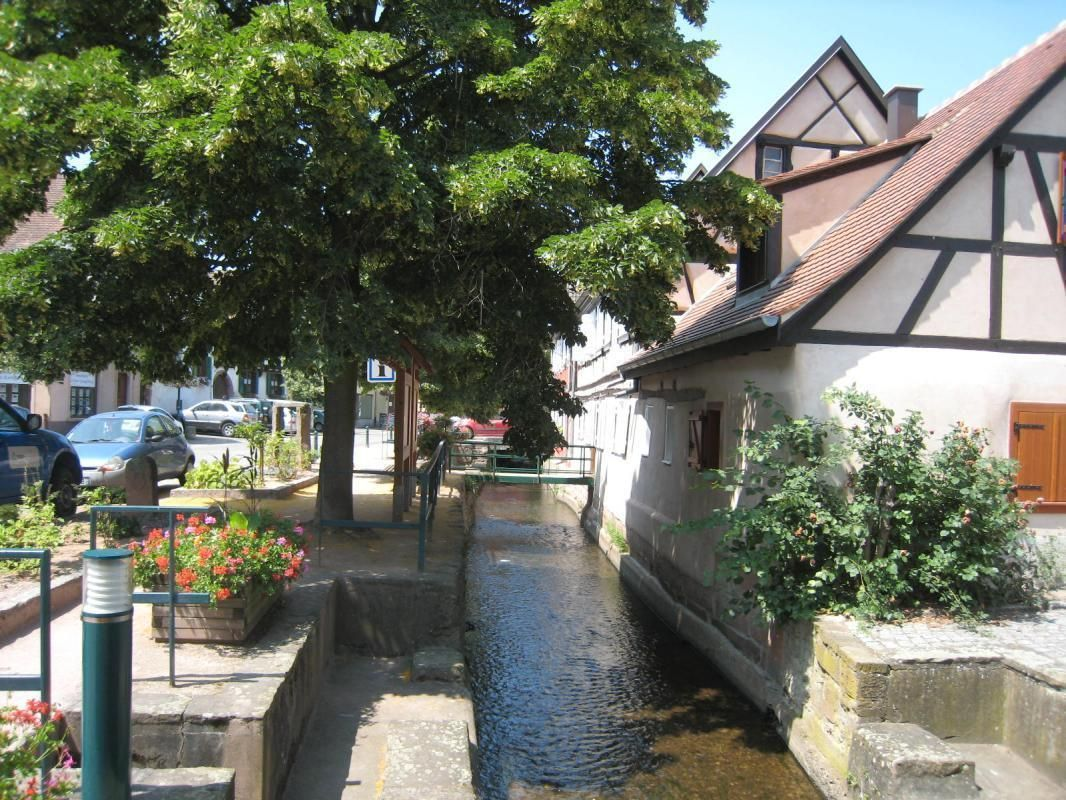 Gîte, côté rivière L'Aubach