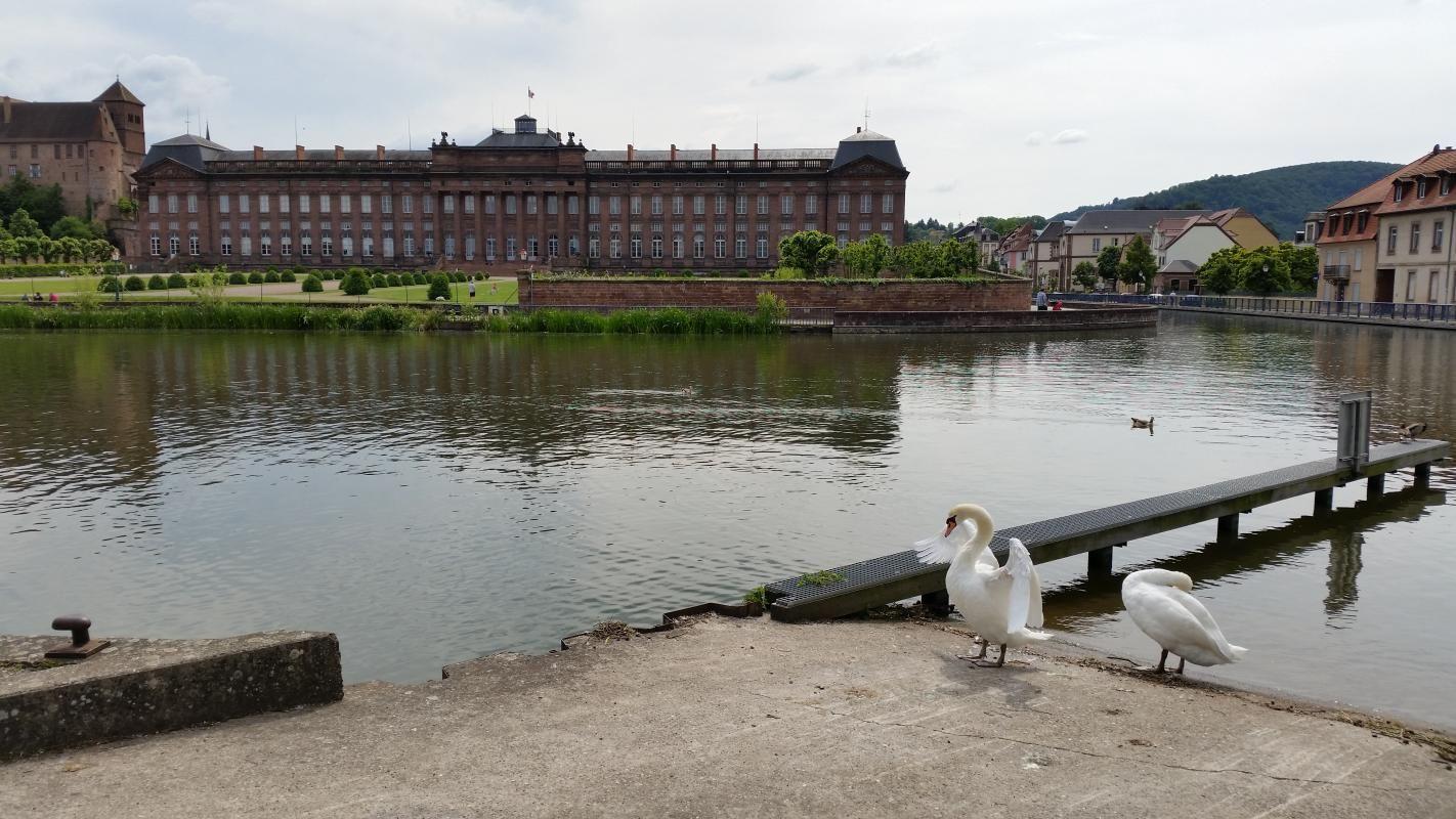 Le Palais Rohan vu du Port de Plaisance, à quelques minutes à pied du gîte