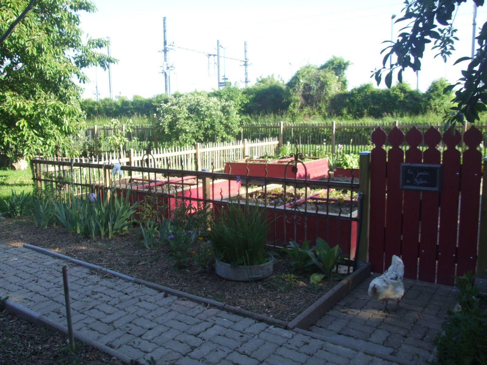 Le jardin de Sylvie  (Permaculture en bacs)