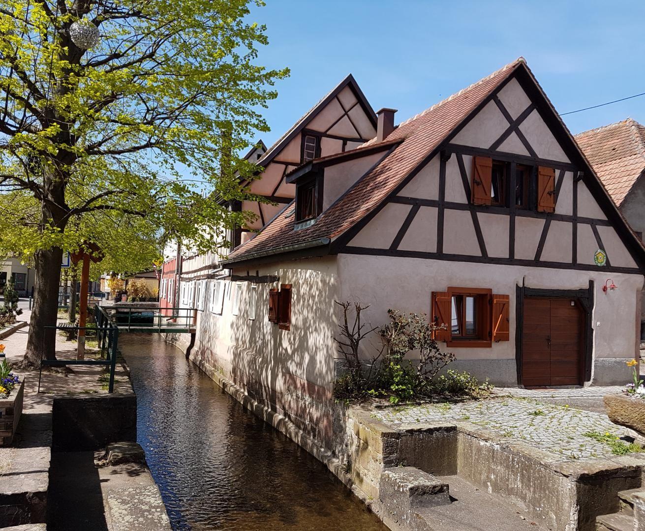 Le gîte, côté de la rivière L'Aubach