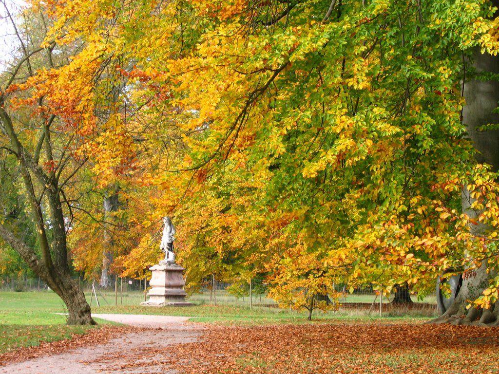 Le Parc de Pourtalès à proximité !