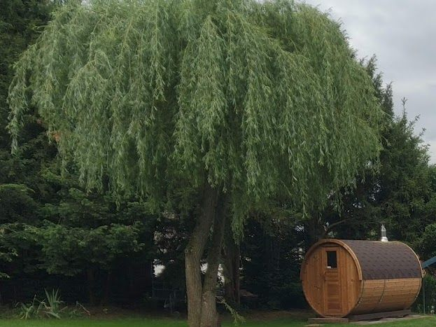 Notre espace piscine, sauna et jacuzzi