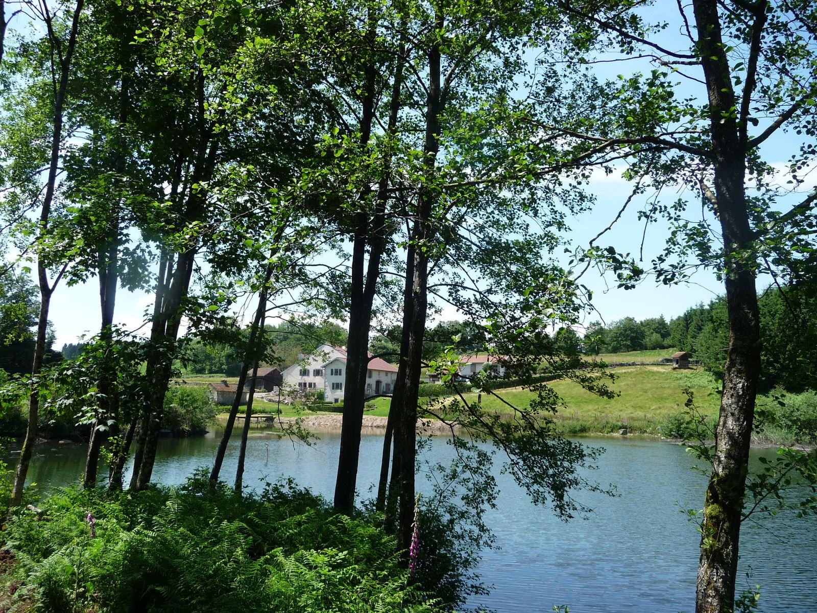 vue du site depuis la chaussée de l'étang