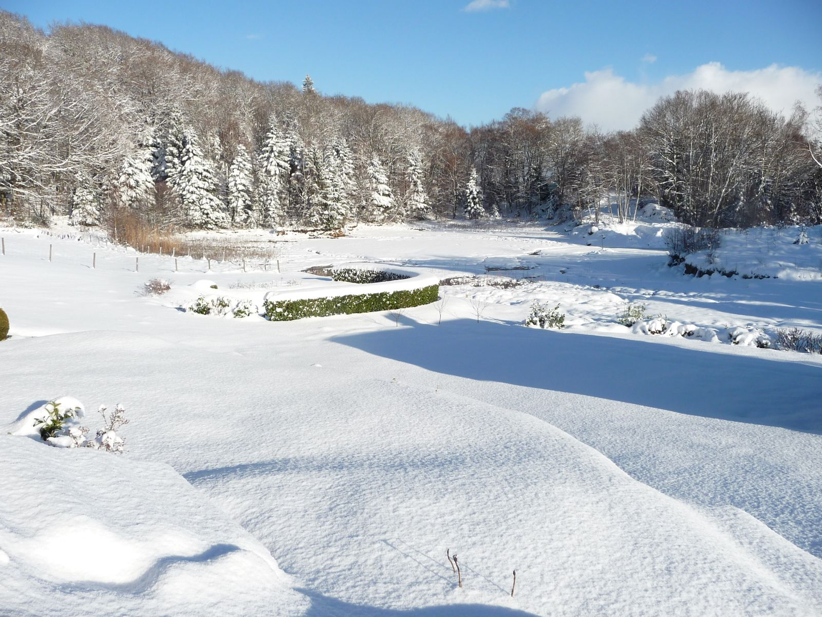 paysage d'hiver, l'étang sous la neige.
