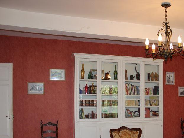 Salon avec bibliothèque