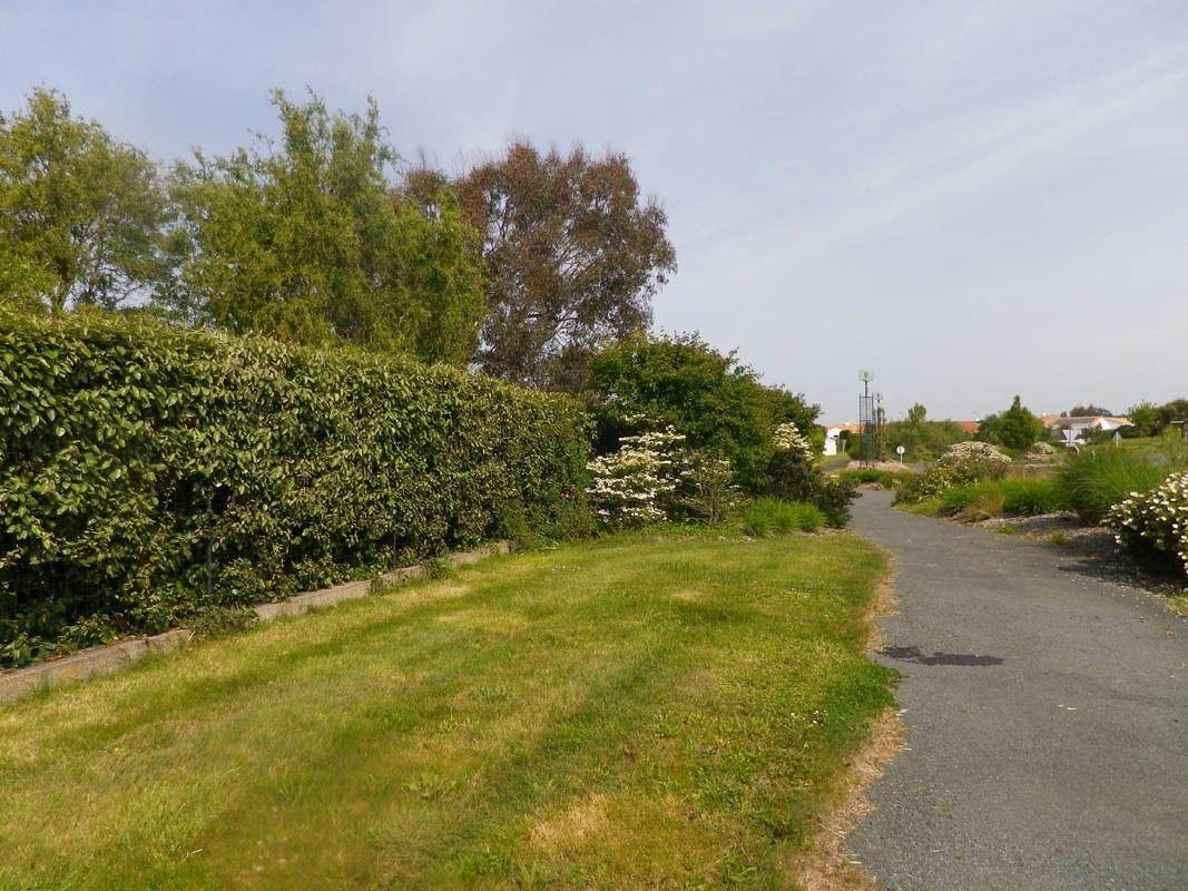 promenade piétonne /vélo de l'autre côté du jardin