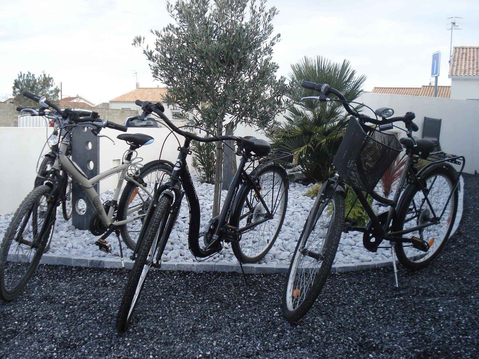 Vélos adultes