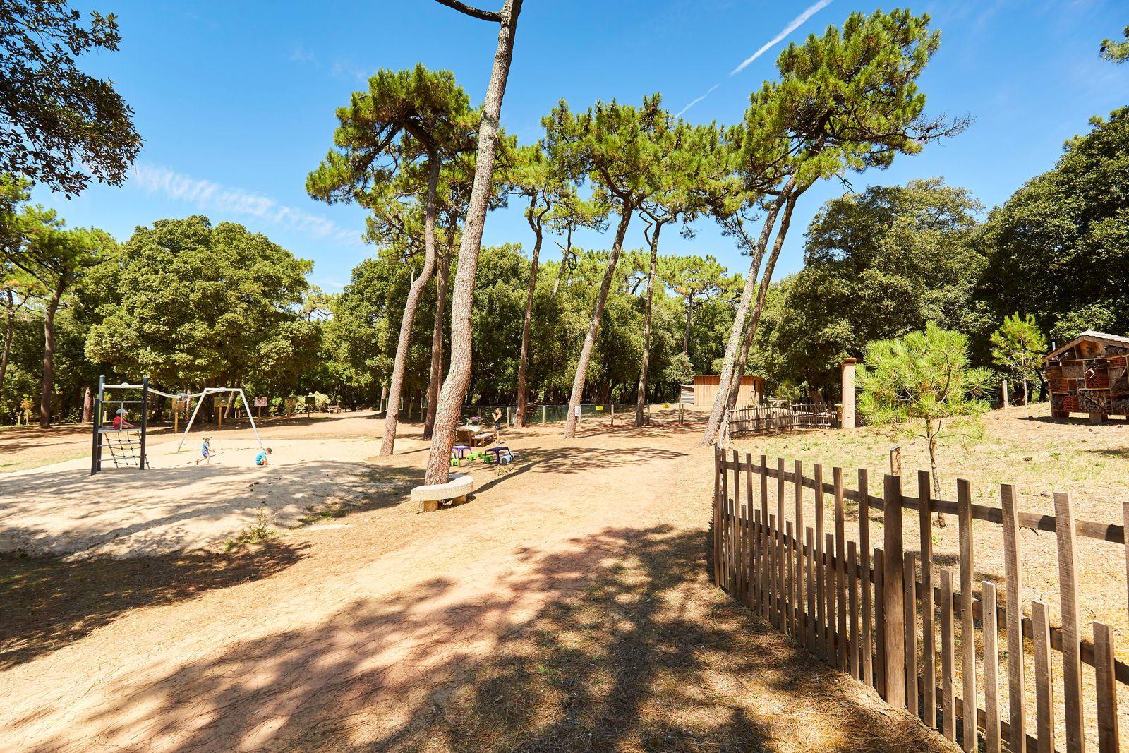 Parc et forêt