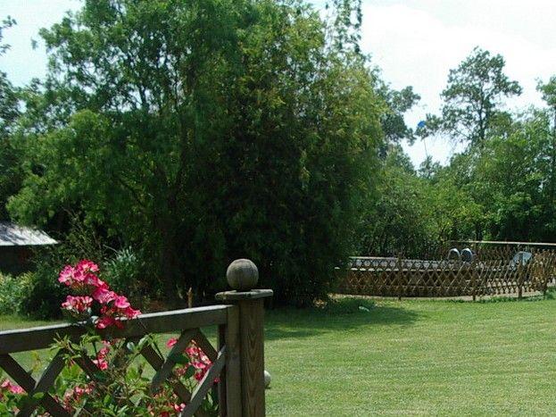 Jardin paysagé