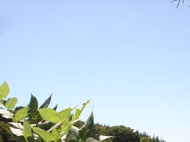 Photo 10/24