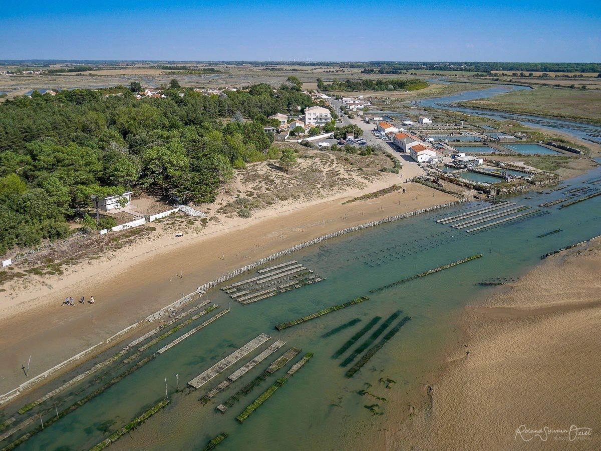 vue aérienne de la Guittière