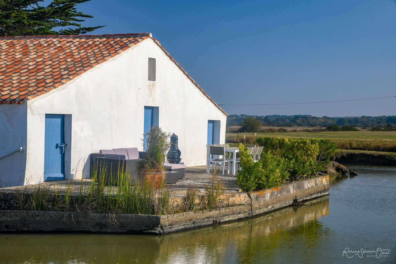 Terrasse à disposition sur plan d'eau et marais : magnifique !