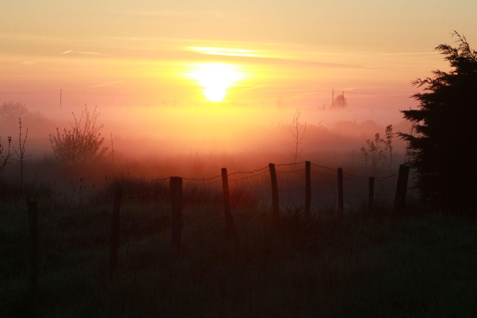 Soleil couchant sur les marais.