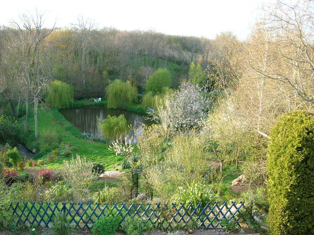 Le parc et l'étang