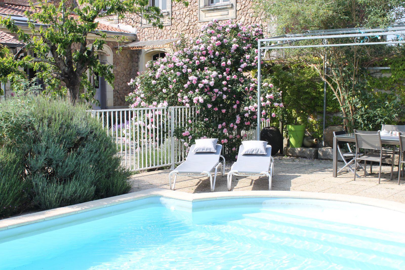 Vue piscine e La Villa des Roses