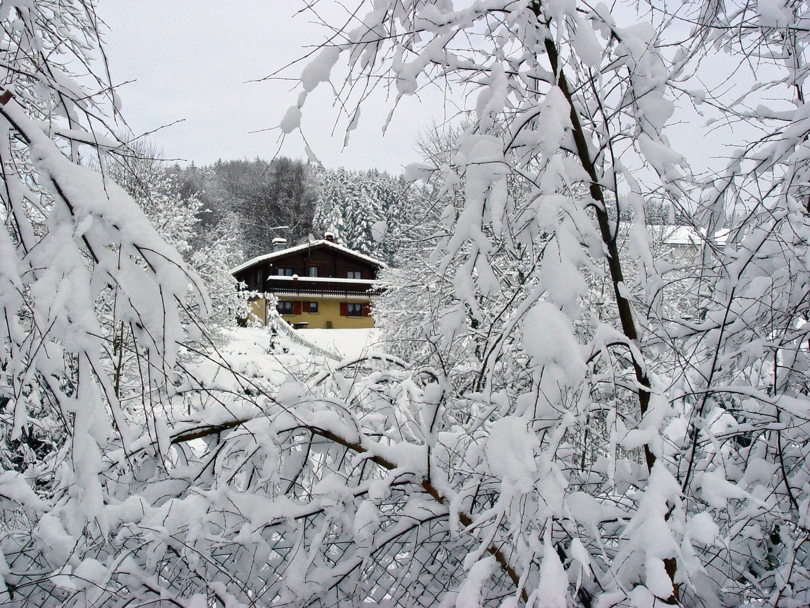 Le chalet en hiver