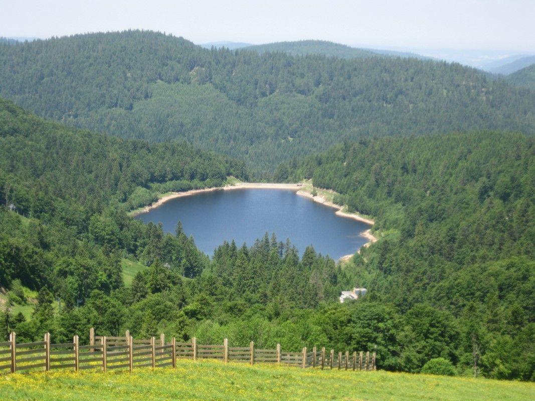 le lac de Blanchemer à la Bresse
