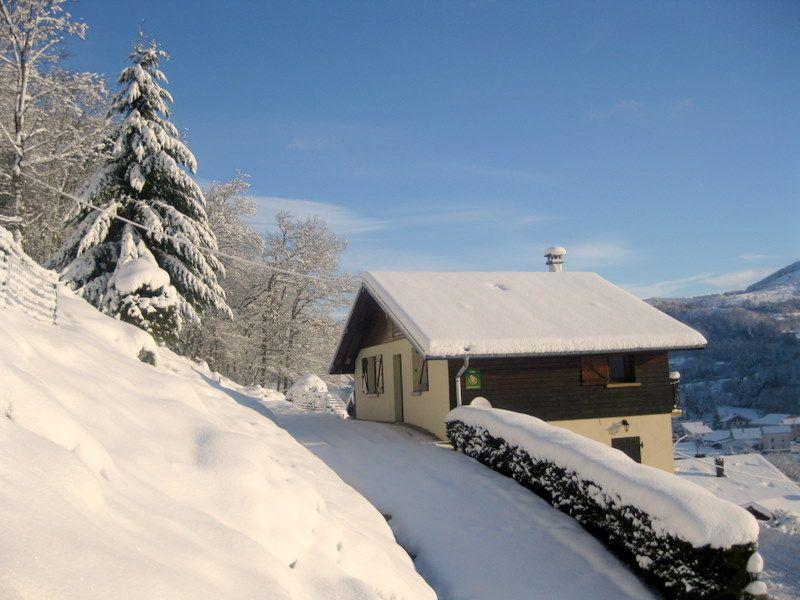 le gite perce-neige  et pâquerette en bas en hiver